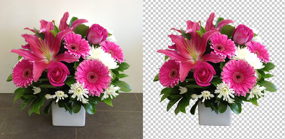 Cut Out Image: Background Removal  Clipping Path Services